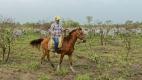 Autodidacte, César apprend à monter à cheval. Il s'initie au galop. Sa lecture de chevet est un traité d'agronomie