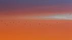 Fin de matinée, les couleurs orangées s'intensifient sur la laguna Colorada