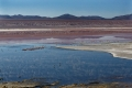 Laguna Colorada, Sud Lipez, Reserva Nacional de Fauna Andina Eduardo Avaroa