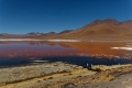 Laguna Colorada. Où est Daniel ?