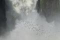 Salto San Martin Chutes d'Iguazú