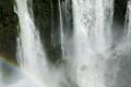 Cascades des Chutes d'Iguazú