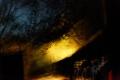 En route pour la Gorge du Diable, un soir de pleine lune aux chutes d'Iguazú depuis le petit train
