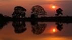 Coucher de soleil sur le Pantanal