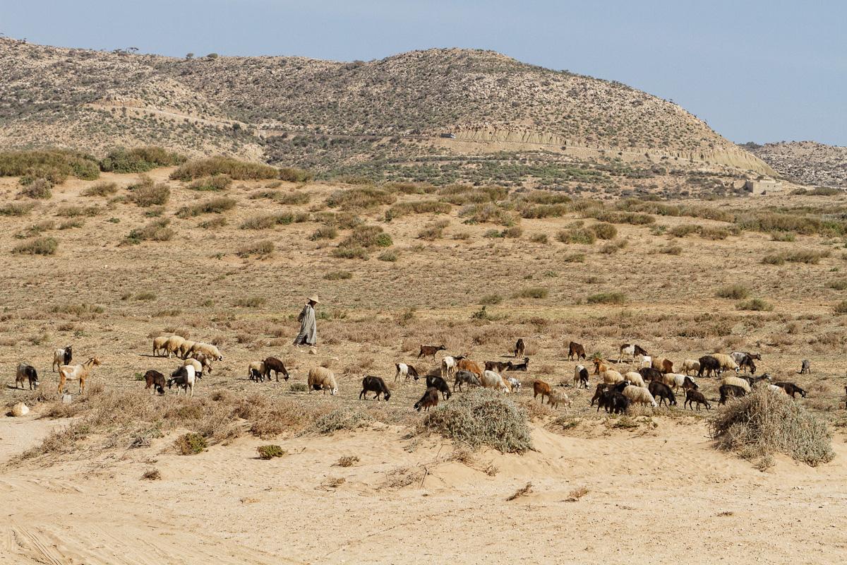 2014_D_Maroc_0778_DxO