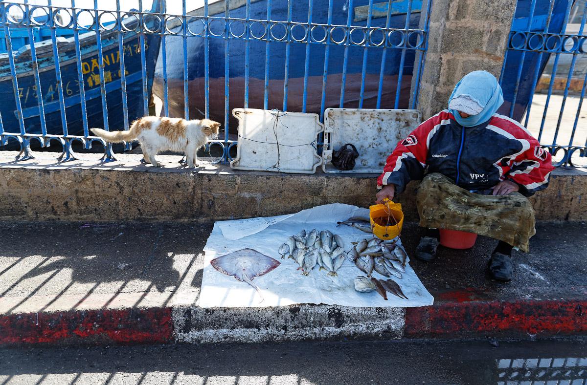 2014_M_Maroc_0513_DxO